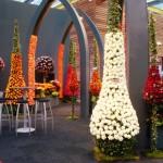 Expozitia de Flori Amsterdam 12