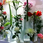 Expozitia de Flori Amsterdam 5