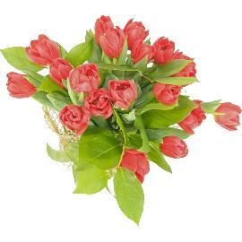 De Sfantul Valentin reaminteste-i ca o iubesti!