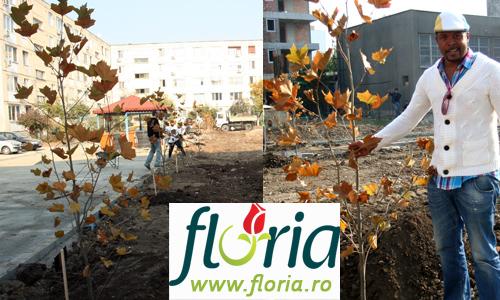 Bilant Floria 2011