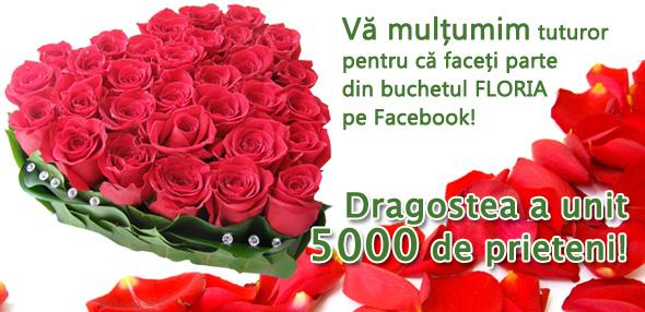 Floria are 5000 de prieteni pe Facebook! Va multumim!