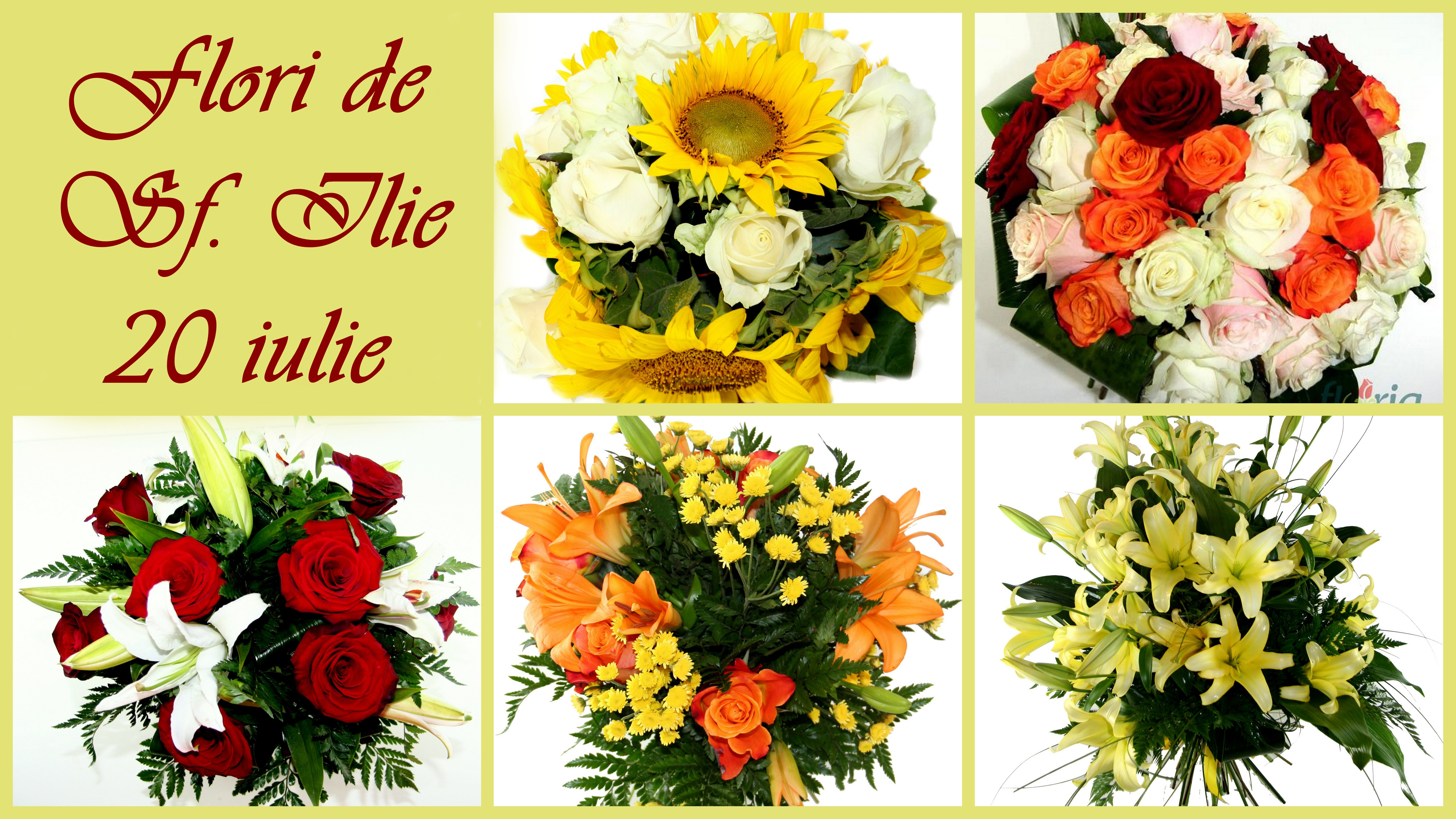 Flori de Sfântul Ilie
