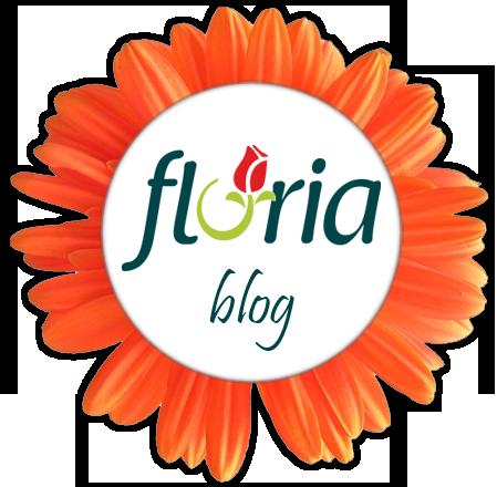 Blogul Floria.ro - aici discutam despre flori. Si buchete. Online.