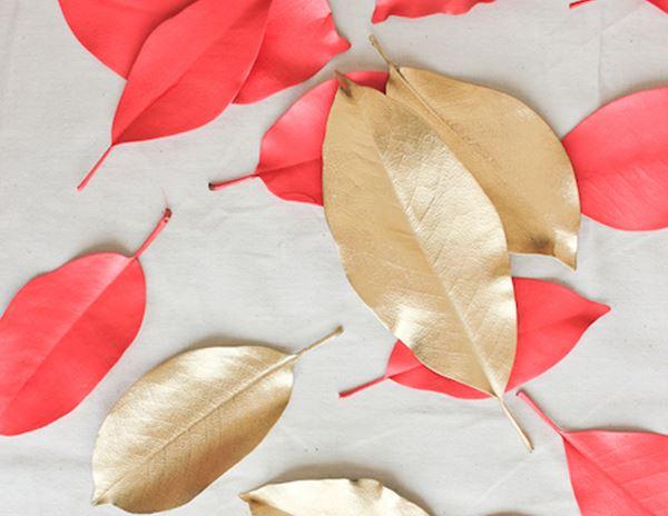 7. colectie frunze
