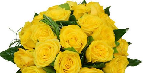Flori de Sf. Gheorghe