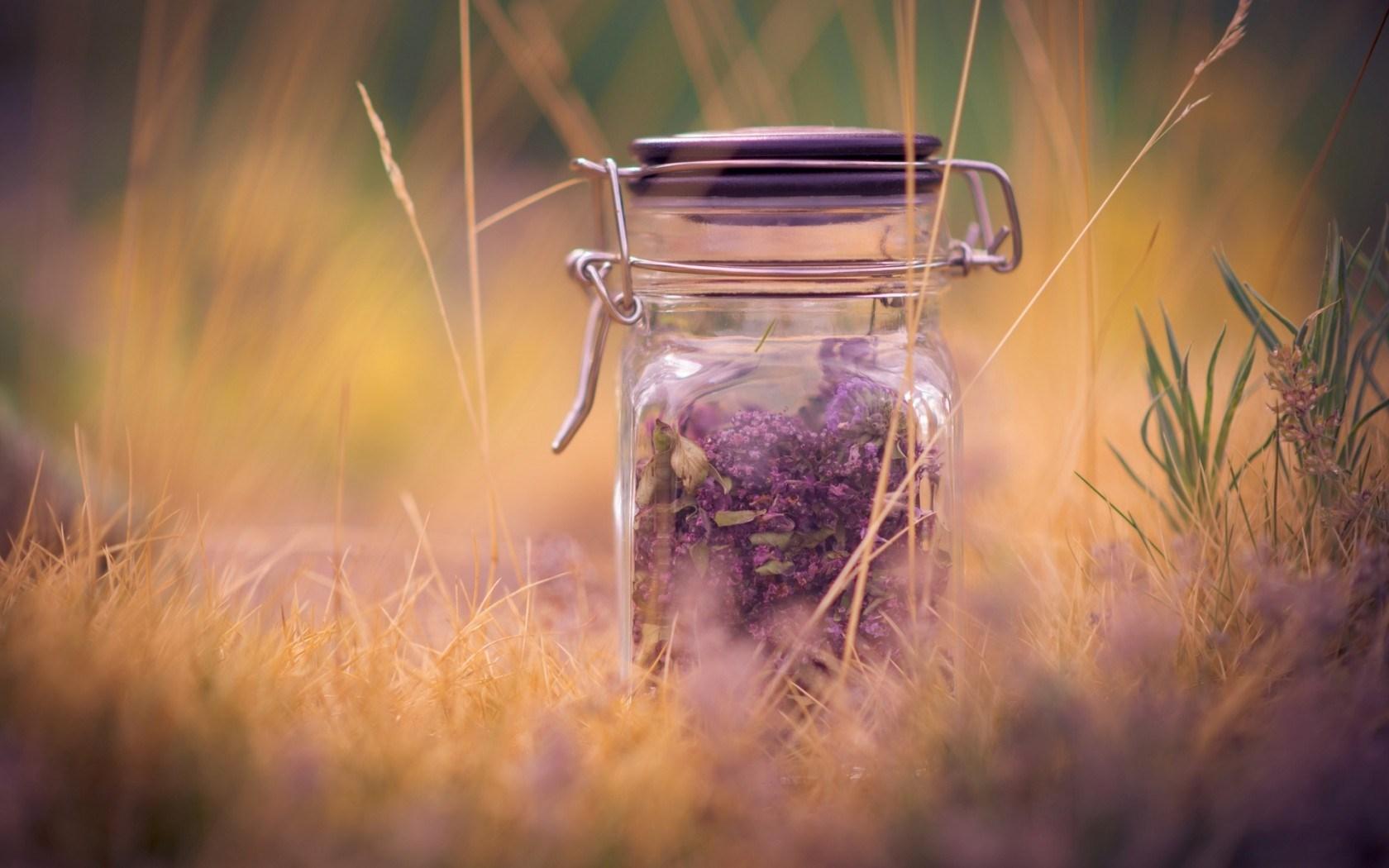 4 idei creative cu flori uscate