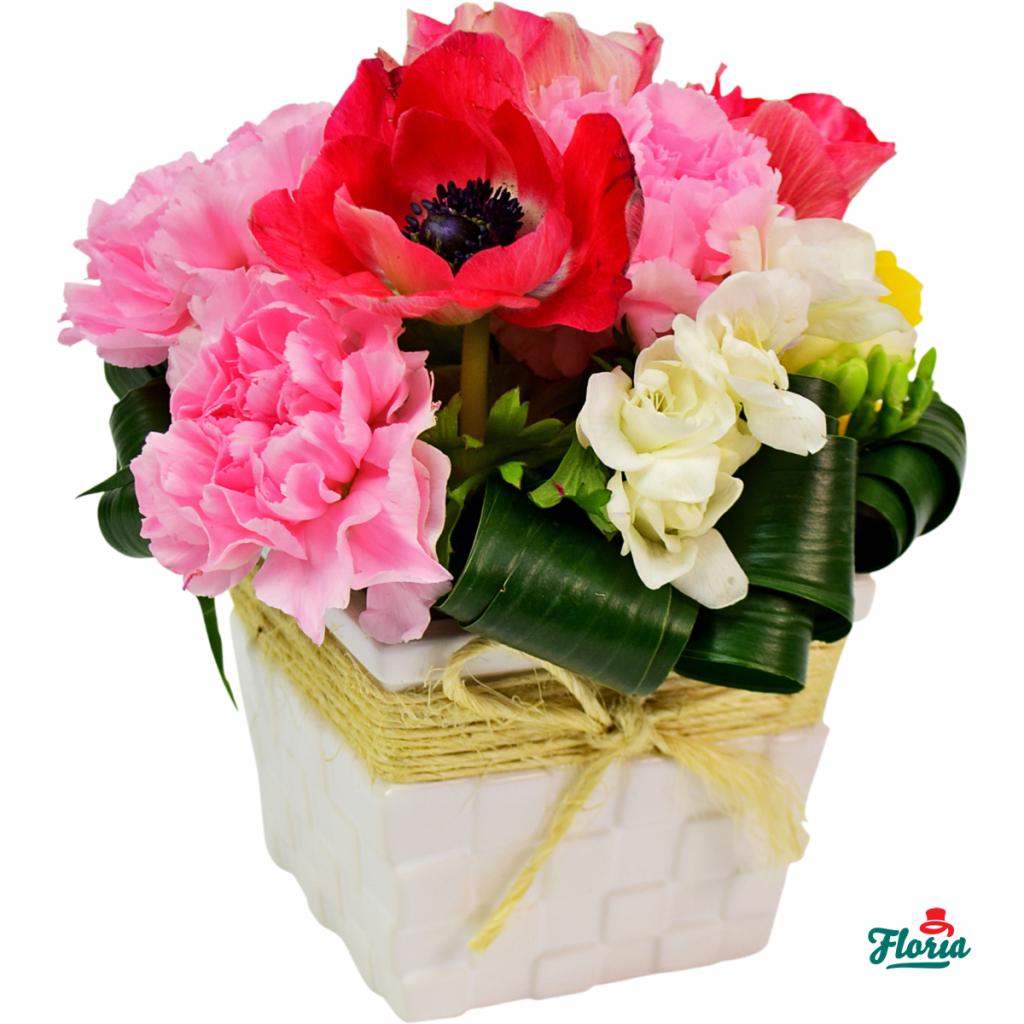 flori-primavara-cu-dragoste-31026
