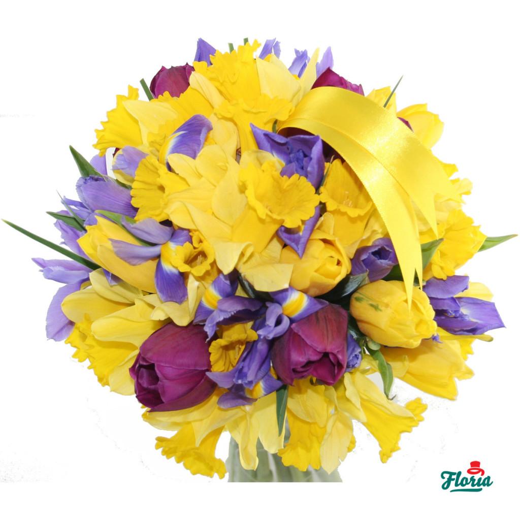 flori-raza-de-soare-731