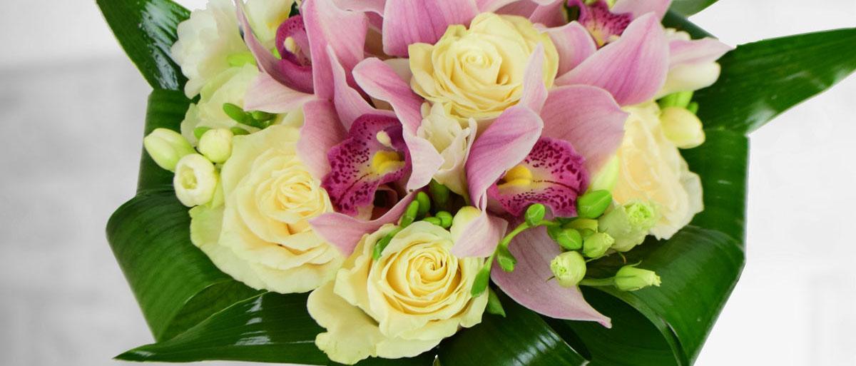 Parfum și rafinament –  Orhideea Cymbidium