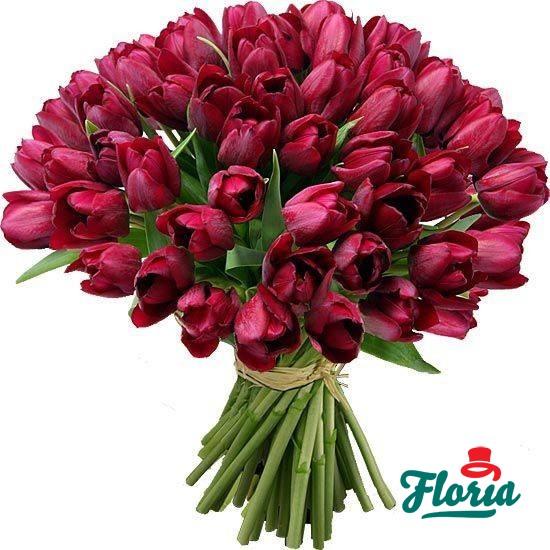 flori-buchet-de-55-lalele-rosii-2457