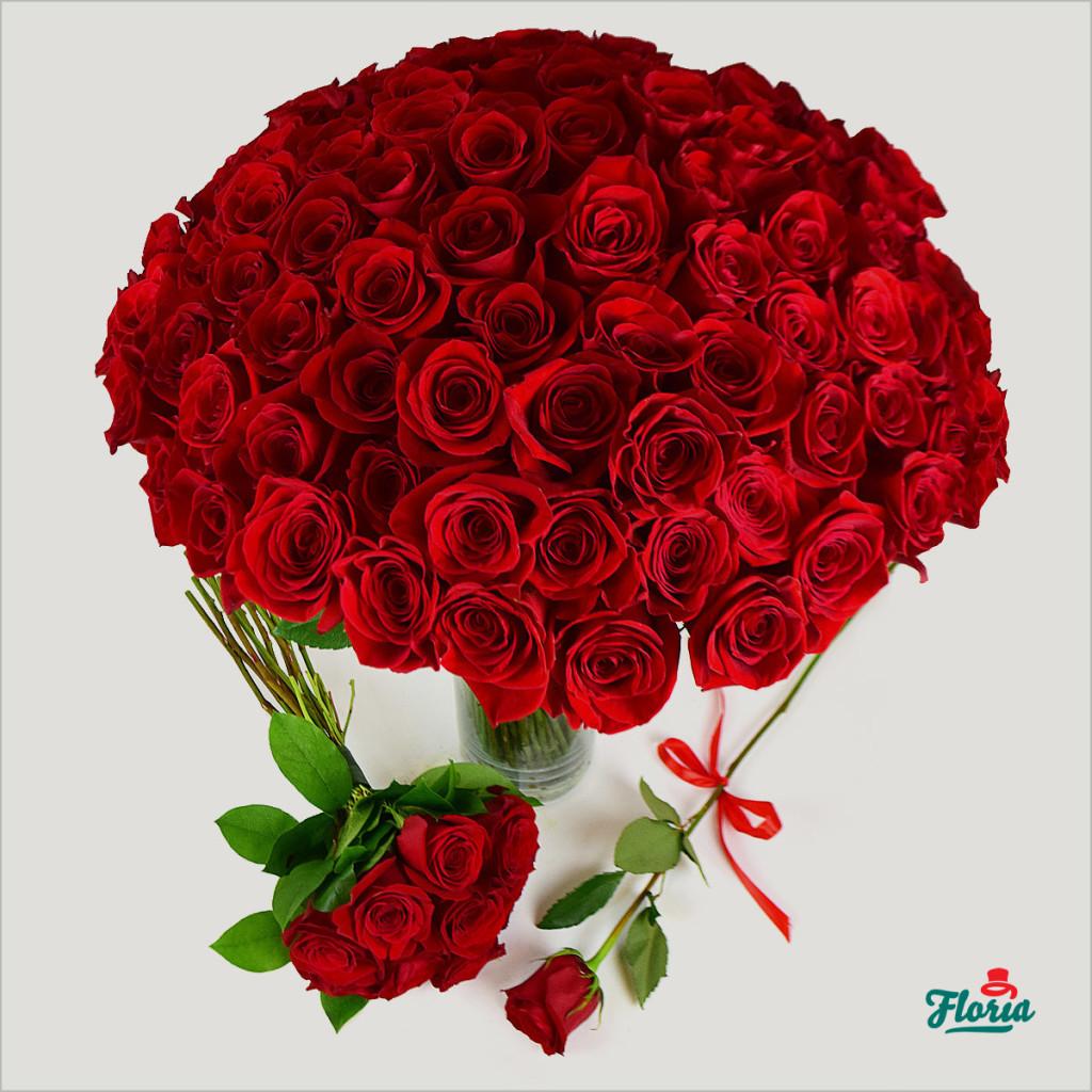 ingrijire trandafiri