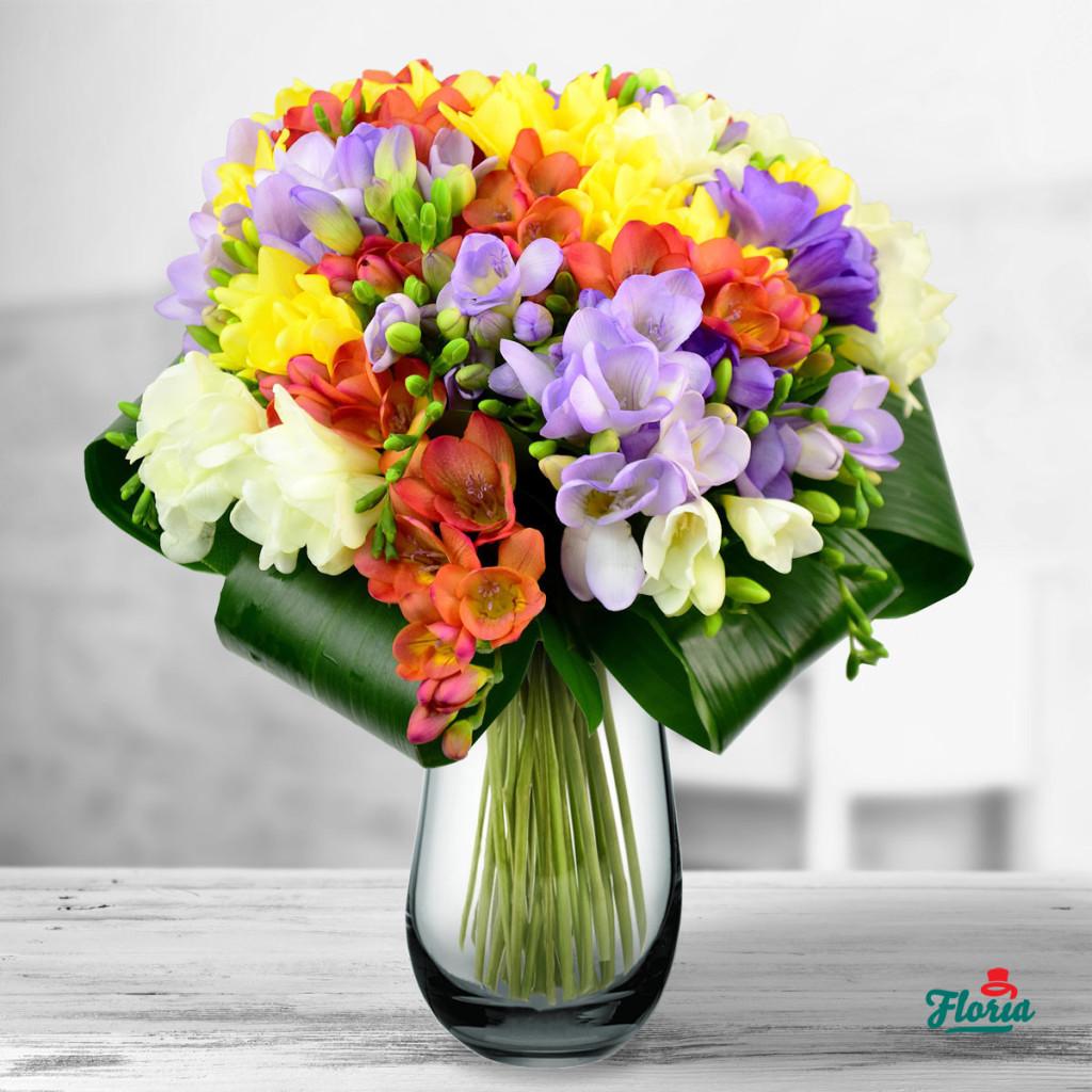 flori-buchet-de-39-frezii-multicolore-33031