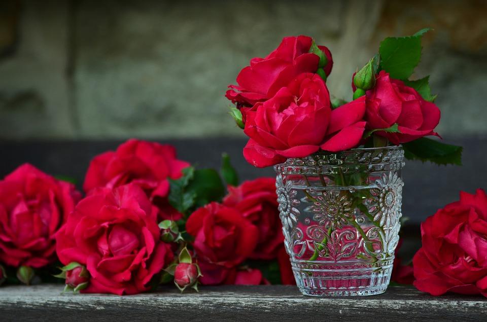trandafir in vaza