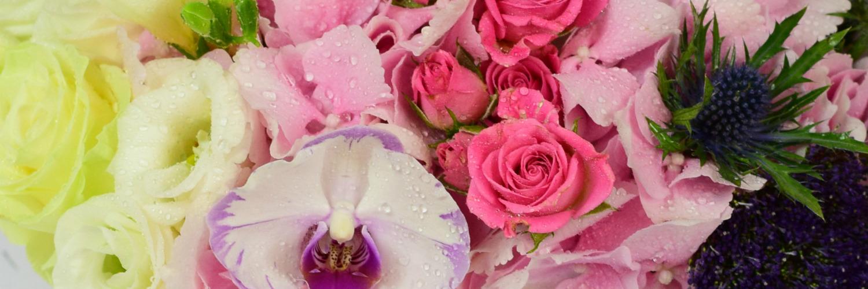 TOP 10 cele mai potrivite flori pentru femeile romantice
