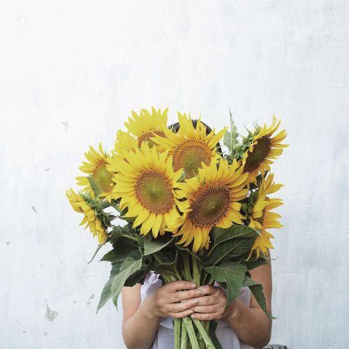 curiozitati-despre-flori