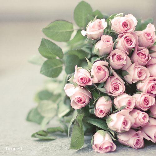 3 Flori arhicunoscute cu semnificatii ascunse