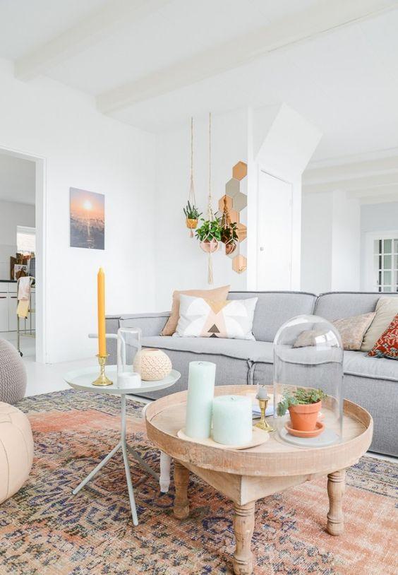 ingrijirea-plantelor-de-apartament-2