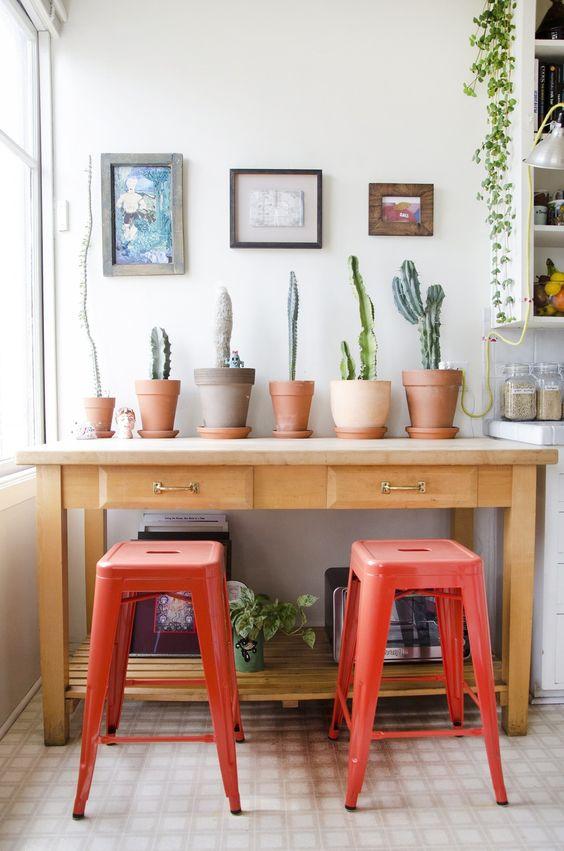 ingrijirea-plantelor-de-apartament