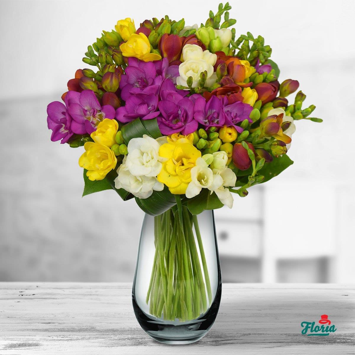 Misterul florilor de primavara – freziile