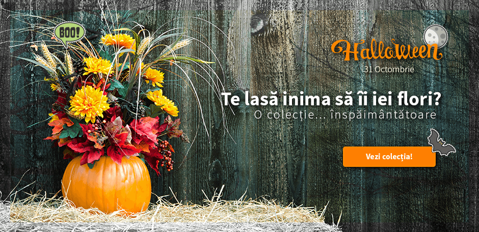 Cum se manifesta sarbatoarea Halloween – traditii si costume