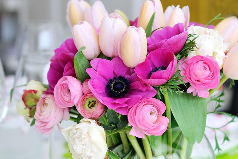 Alint cu flori de primavara