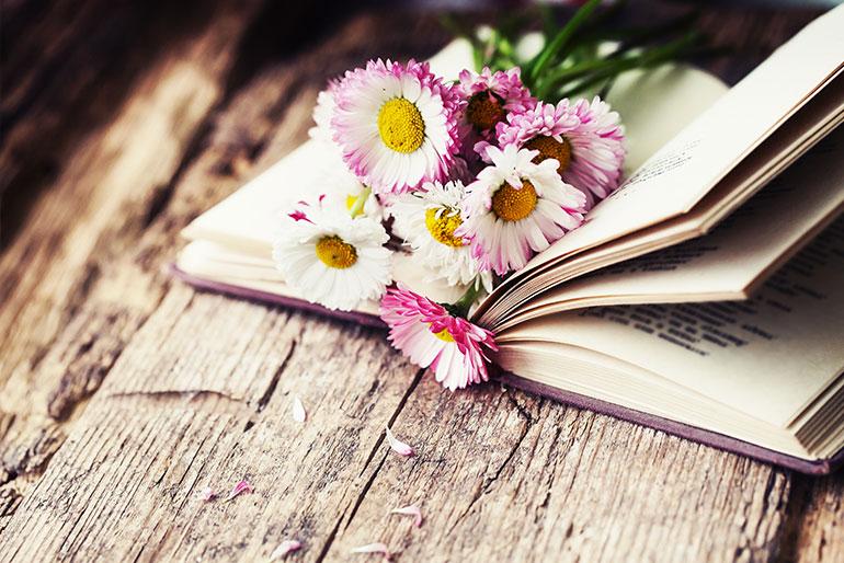 Povestile si legendele din spatele florilor