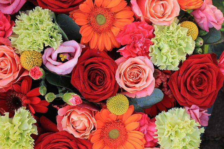 6 flori care aduc noroc